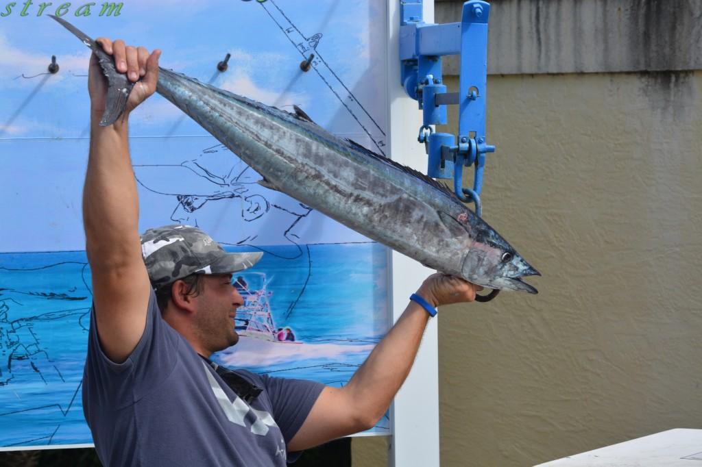 Wahoo fish envy charters for Boca raton fishing